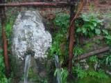 Chuva a potes origina fonte gémea | autor: Teresa Cunha Pereira