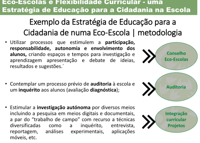 Eco-Escolas_Sintra_final30