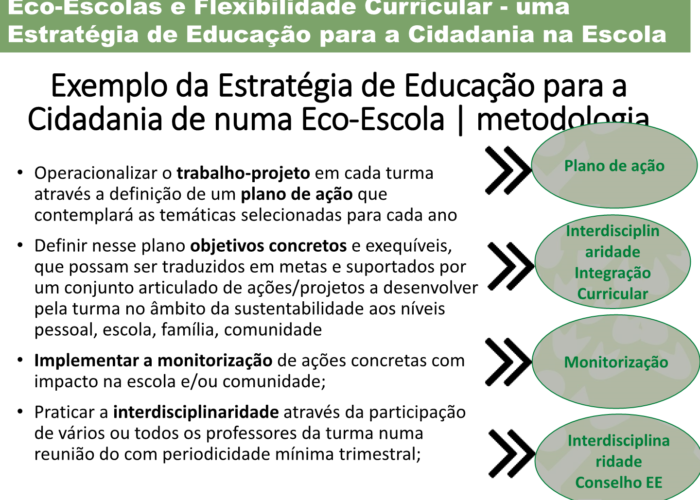 Eco-Escolas_Sintra_final31