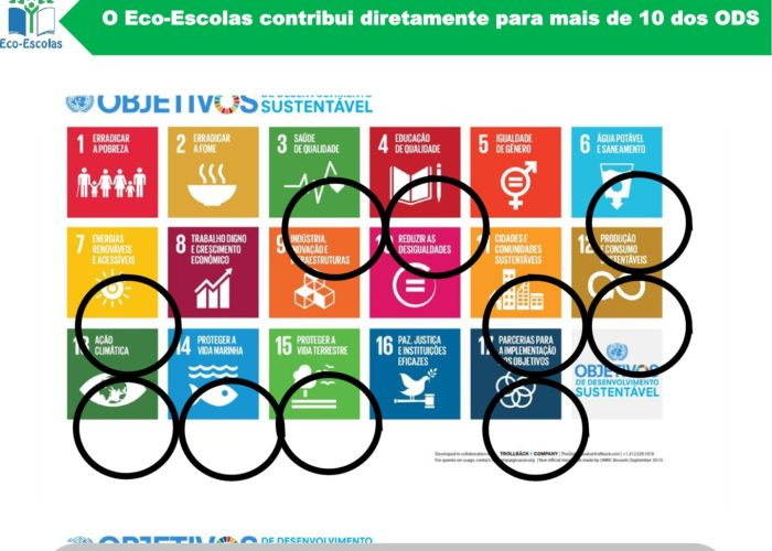 Eco-Escolas_Sintra_final6