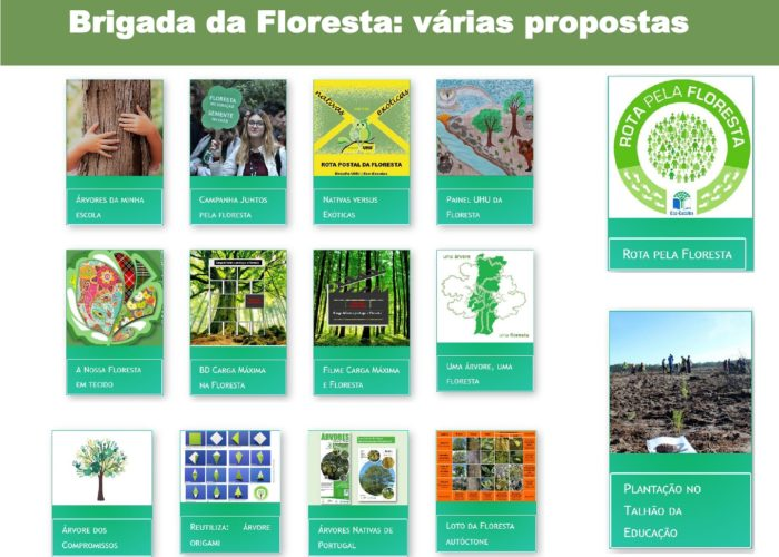 Eco-Escolas_Sintra_final60